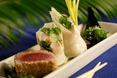 JW _Tuna_Sp_Roll_Seaweed_139