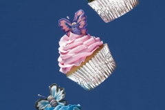 JW_Dallas_Affairs_Cupcakes_027